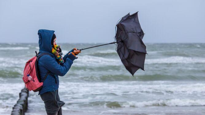Nadchodzące dni z wietrzną aurą. <br />Ostrzeżenia i prognoza zagrożeń